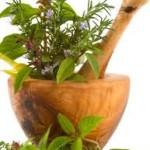 medicina ayurveda y yoga