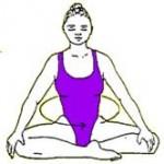 PADAMASANA postura perfecta o del adepto