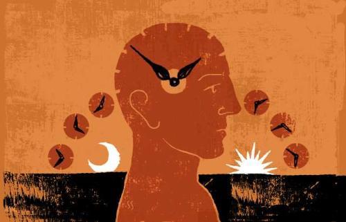 CRONOBIOLOGÍA, escuchar el reloj interior